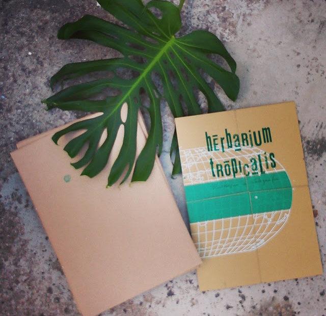 Herbarium Tropicalis – uma coleção de plantas e técnicas.