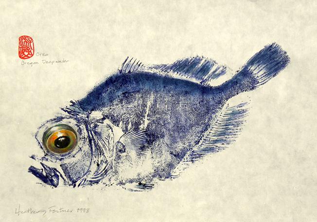 Conhece a técnica de impressão Gyotaku?